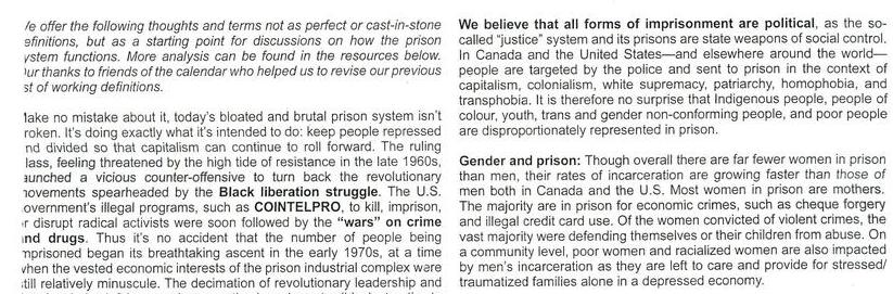 Some Thoughts On Prisons & Political Prisoners
